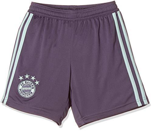 adidas FCB A SHO Y Shorts, Kinder, Violett (Purtra/Grün), 152