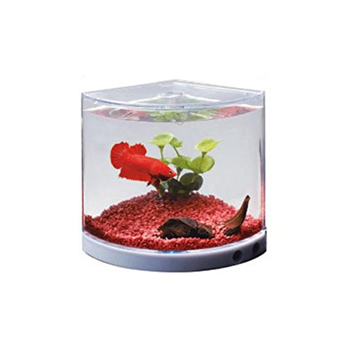 Dophin T-101 Plastic Aquarium Betta Fish Mini Tank at amazon