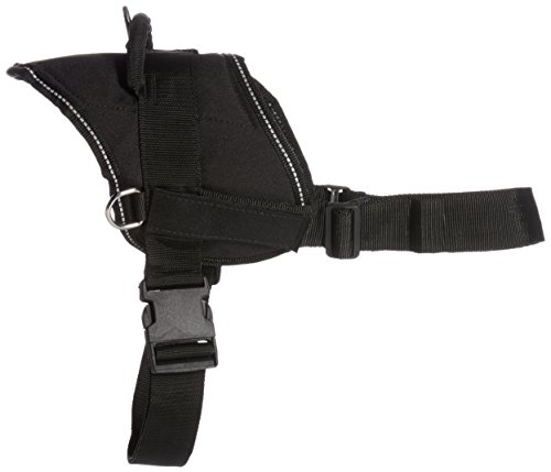 DT-Fun-Harness-Will-Fetch-For-Food-Black-with-Reflective-Trim-X-Large-Fits-Girth-Size-34-Inch-to-47-Inch