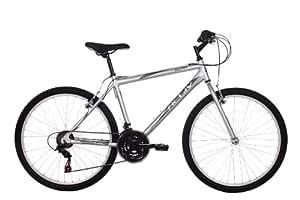 Raleigh Men's Active Akan Mountain Bike - Silver, 18-Inch