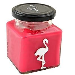 Diseño de flamenco velas de fresas y champaña vienen con vela - rojo