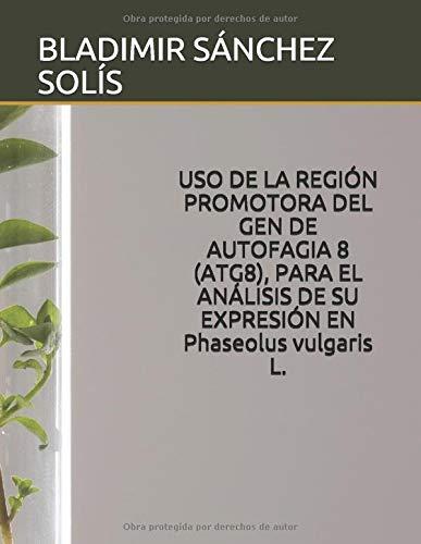 USO DE LA REGIÓN PROMOTORA DEL GEN DE AUTOFAGIA 8 (ATG8), PARA EL ANÁLISIS DE SU EXPRESIÓN EN  Phaseolus vulgaris L.