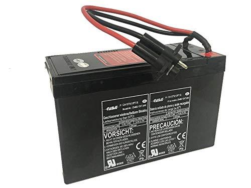 Batteria da 12V / 7,5AH Specifica per Seascooter YAMAHA SEAL - EXPLORER Ricaricabile