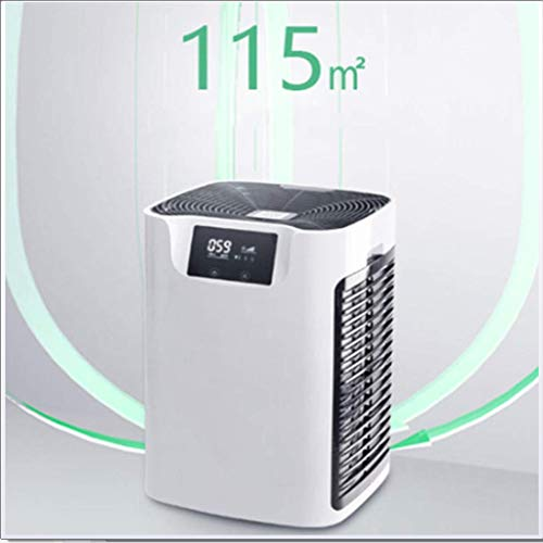 418dlt47jEL. SS500  - Cajolg Air Purifier,In addition to formaldehyde, haze and smoke, 4 levels of adjustment, activated carbon filter Air…
