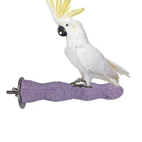 CALCIUM Zähne Schleifen Kauen Spielzeug Vogel Papagei Ara African Greys Wellensittiche Sittiche Käfig Plattform Sitzstange