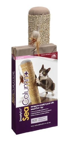smartykat-seacolumn-seagrass-cat-scratch-post-with-snap2it-toy-by-world-wise-pooch-planet