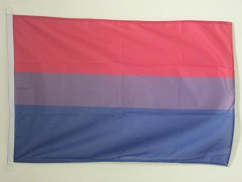 FLAGGE BISEXUELLEN 90x60cm - BISEXUALITÄT FAHNE 60 x 90 cm Aussenverwendung - flaggen AZ FLAG Top Qualität