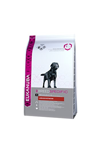 Eukanuba Dry Dog Food Breed Nutrition Labrador Retriever Chicken, 12 kg