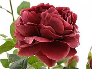 FK Automotive, Pianta finta di rose, con 3 fiori e 3 boccioli, Rosso (Rot)