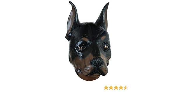 Dobermann lotta cane lattice maschera