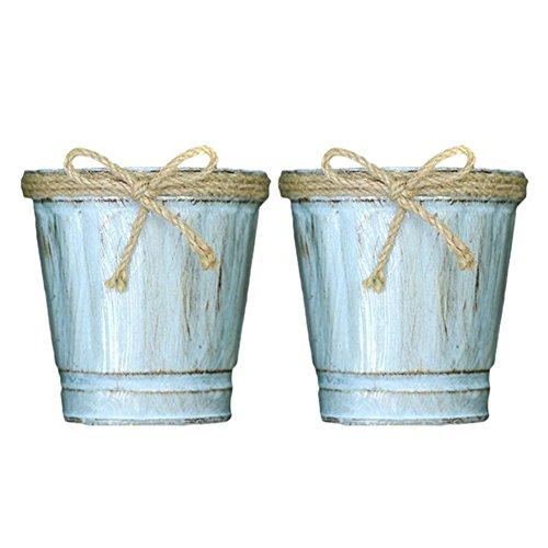 HEIRAO 2 Stücke Mini Metall Blumentopf, kleine Zinn Eimer Eimer mit Hanf, Pflanzen Lagerung Eimer für Garten Pflanzer Haus dekorative Ornament Handwerk