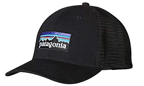 Patagonia P-6 Logo LoPro Trucker Gorra