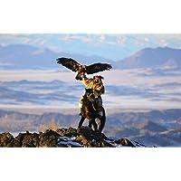 Monti Altaj, Western Mongolia Blank auguri (dove sulla terra?)