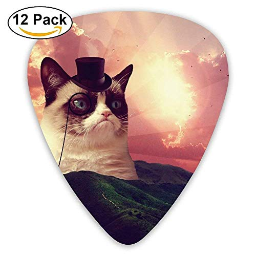 - Gentleman Cat Guitar Picks 12 Pack Set Paddles Plectrums For Guitarist Players