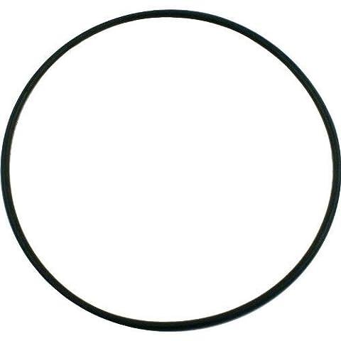 Pentair 355619 O-Ring Seal Bracket for Pool