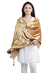 Anekaant Gold Solid Velvet Lace Border Shawl (65X200 cm)