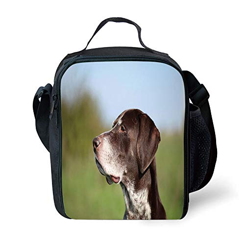 s Hunting Decor,German Short Haired Pointer in Wilderness Portrait Photo Kurzhaar Pet Dog,Multicolor for Girls or Boys Washable ()