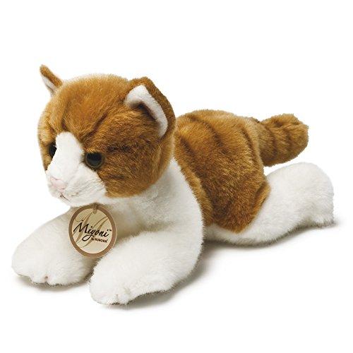 MiYoni Katzen-Ginger gestromt Katze