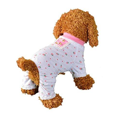 Haustier Hund Kleidung, LHWY Hund Katze Bogen Tutu Kleid Spitze Rock Pet Puppy Dog Princess Kostüm Bekleidung Kleidung (M, Weiß)