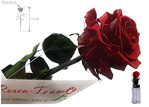 Rosen-te-amo Rote Rose (Konservierte Rose) - Haltbare Blume (echte Blume)