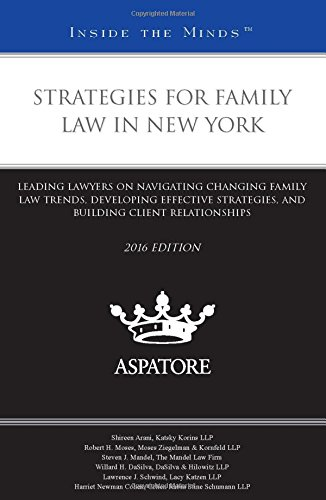 strategies-for-family-law-in-new-york-2016-leading-lawyers-on-navigating-changing-family-law-trends-