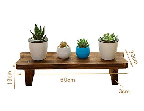 ZCJB Etagères de plantes Balcon Salon Antiseptique Bois Multicouche Succulentes Fleur Plateau Véritable Bois Plancher Seule Couche (taille : 60 * 13cm)