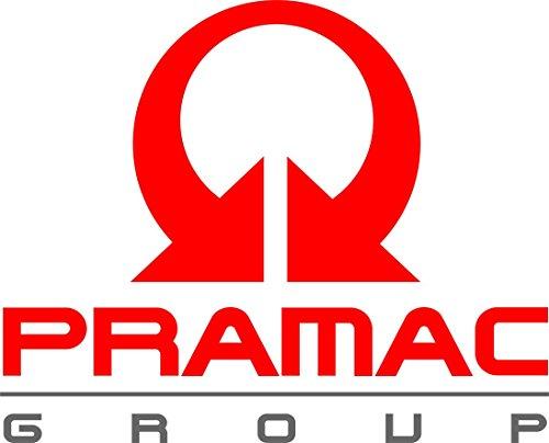 Adesiviautoemoto - Int-Pramac Group 20