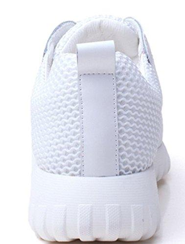Chaussures d'été/School mesh chaussure plate occasionnelle/ circulaire A