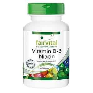 Vitamin B-3 Niacin 100 mg Nicotinamid 250 Tabletten - vegan - Belebend für Körper und Geist - Reinsubstanz