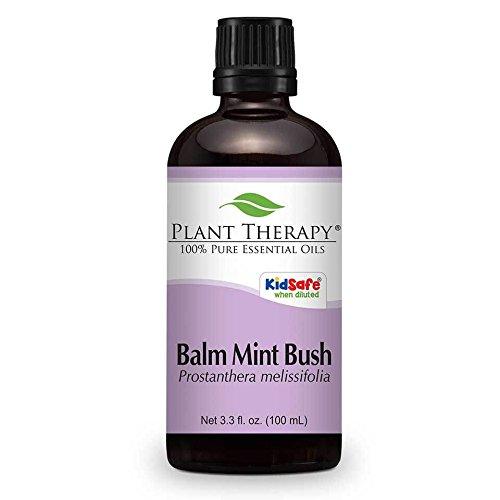 Preisvergleich Produktbild Balm Mint Bush Ätherisches Öl 100 ml Ätherisches Öl 100% reine,  unverdünnte