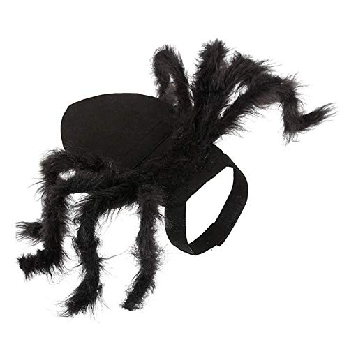 TFWJ Haustier Hund Katze Kostüme Spinne Horror Simulation Plüsch Käfer Halloween Mantel (Spinne Kostüm Katze)