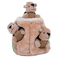 Outward Hound - Nina Ottoson Hide-A-Squirrel Puzzle Plush Dog Toy, Brown, Small, 0.114 kg