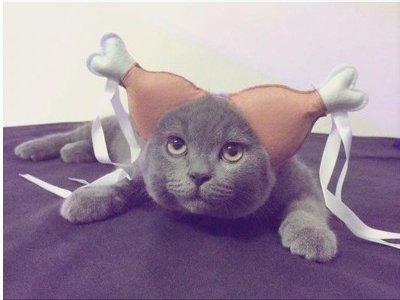 (Badpet Funny Pet Kostüme Hähnchenschenkel Kopfschmuck Kostüme für Hunde und Katzen Halloween Christmas Party (L))
