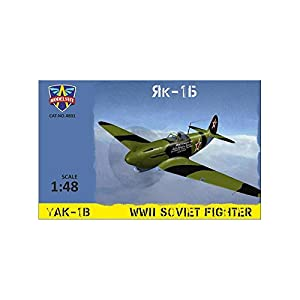Modelsvit msvit4801-Maqueta de Yak de 1B WWII Soviet Fighter, Gris