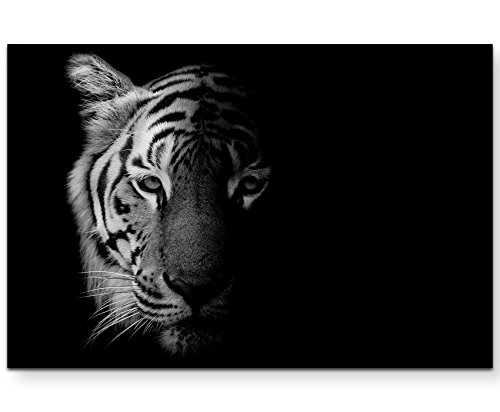 Paul Sinus Art Leinwandbilder | Bilder Leinwand 120x80cm Portrait Tiger Schwarz/weiß