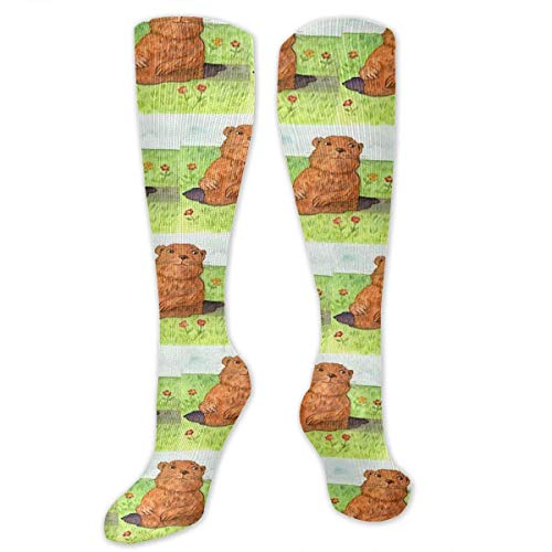 dfjdfjjgfhd Whimsical Groundhog Day Out Compression Socken for Women and Men - Best Medical,for Running, Athletic, Varicose Veins, Travel.