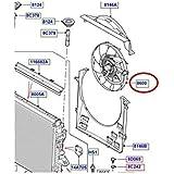 viscocoupleur y ventilador para Range Rover para Land Rover–lr025955