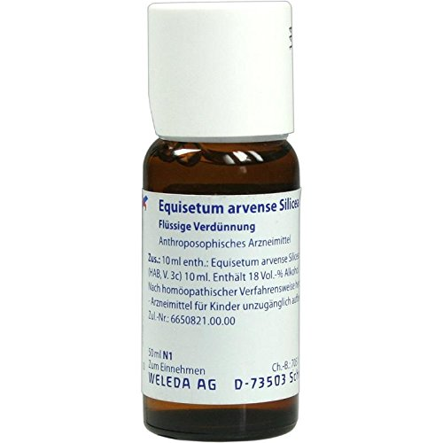 EQUISETUM ARVENSE Silicea cultum D 2 Dilution 50 ml Dilution