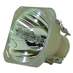 Bulb for Optoma EP738 Lutema Projector Replacement Lamp with Housing