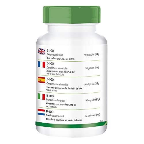 B-100, vegan, Vitamin B-Komplex, B1 (Thiamin), B2 (Riboflavin), B3 (Niacin), B5 (Pantothensäure), VB6 (Pyridoxin), B7 (Biotin), B9 (Folsäure), B12 (Cobalamin) – Immunsystem,