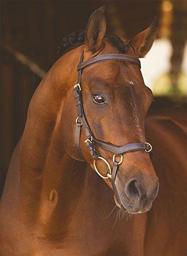 Horseware Rambo Micklem Multibridle braun (Small Horse)