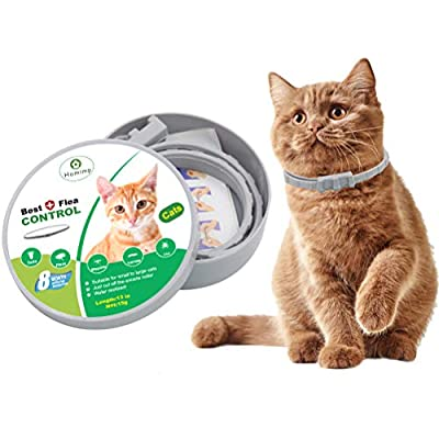 HOMIMP Cat Flea Collar 8 Months Protection - Flea Tick Treatment for Cats Kittens Puppies 33cm from HOMIMP