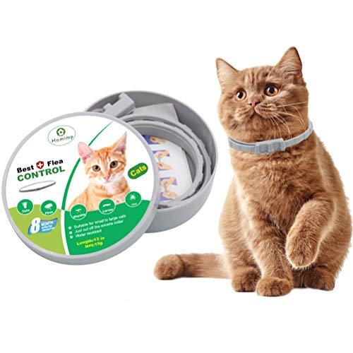 Homimp gatto antipulci collare 8mesi di protezione–flea tick trattamento per gatti gattini cuccioli 33cm