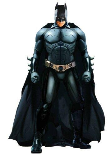 Batman Begins - DC Direct 13 pulgadas de lujo para coleccionistas (Jap?n importaci?n / El paquete y el manual est?n escritos en japon?s) 1