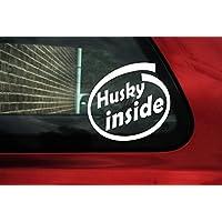 Cane Husky interno adesivo–Bordo Auto Segno - Siberian Husky Adesivo