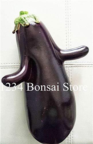Dark Aubergine (Sump 100 Stück Auberginen Gemüsesamen für schönes Garten Dark Purple)