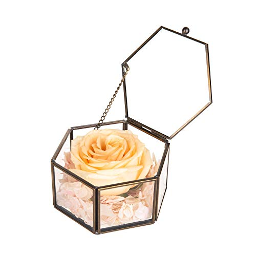 Feyarl Glasbox Geometrisches Glas Terrarium Box handgemacht Messing verzierte Ringe Ohrringe Box Konserviert Blume Dekorative Box Schmuckkästchen