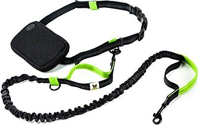 Joggingleine für kleine Hunde bis 15 kg von Hundefreund | Elastische Reflektierende Hundeleine von 110 bis 160 cm dehnbar | Leine zum Joggen Laufen Radfahren Wandern