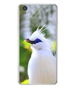 PrintVisa Sponsor A Bird High Gloss Designer Back Case Cover for OnePlus X :: One Plus X