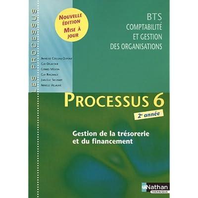 Processus 6 - xGestion de la trésorerie et du financement - BTS CGO 2e année